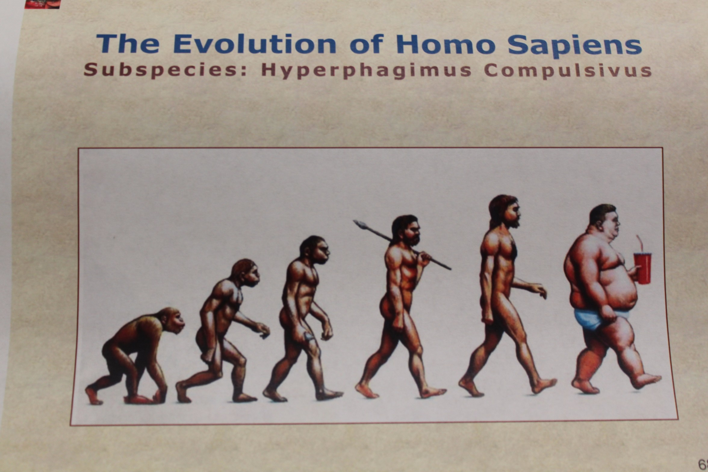 the use of homo sapiens to reliably understand the truth about ancient times Careful dating of finds across europe suggest homo sapiens could have reached when times got hard for is this the stomach-turning truth about what the.